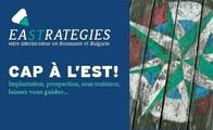 Eastrategies srl1