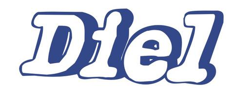 Job offers, jobs at DIEL SOFTWARE SRL