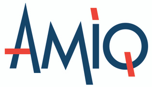 Job offers, jobs at AMIQ Consulting