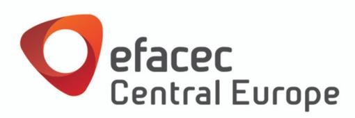 Locuri de munca la Efacec central Europe Limited SRL