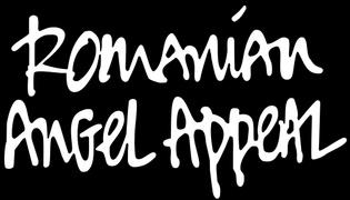 Locuri de munca la Fundatia Romanian Angel Appeal