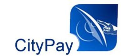 Locuri de munca la CityPay SRL