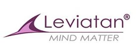 Job offers, jobs at SC LEVIATAN DESIGN SRL