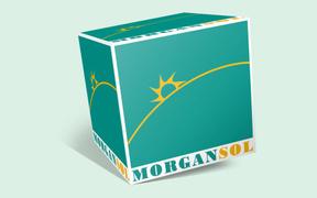 Locuri de munca la Morgan Sol SRL
