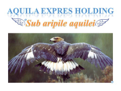 Stellenangebote, Stellen bei AQUILA EXPRES HOLDING SRL