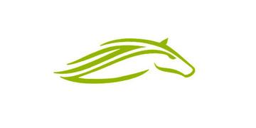 Locuri de munca la Green Horse Games