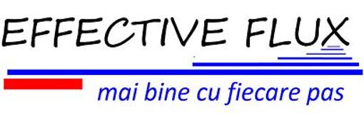 Locuri de munca la EFFECTIVE FLUX SRL