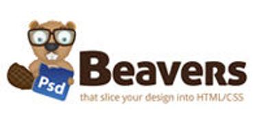 Locuri de munca la PSD Beavers