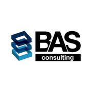 Állásajánlatok, állások BUSINESS ANALYSIS & STRATEGY CONSULTING SRL