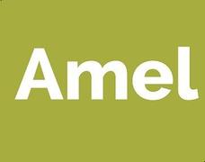 Locuri de munca la Amel International Group