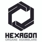 Locuri de munca la HEXAGON OA SRL