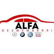 Job offers, jobs at Alfa Dezmembrari SRL