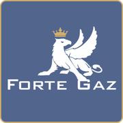 Locuri de munca la S.C.FORTE GAZ S.R.L.