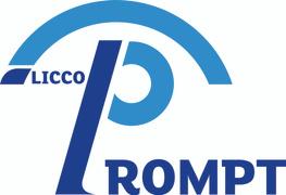 Locuri de munca la LICCO PROMPT 2000 SRL