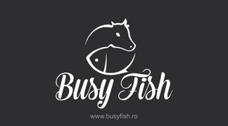 Locuri de munca la Busy Fish srl