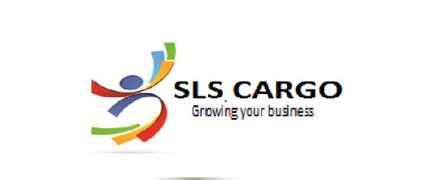 Locuri de munca la SLS CARGO SRL