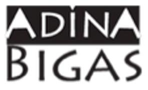 Locuri de munca la Bigas Adina Monica PFA