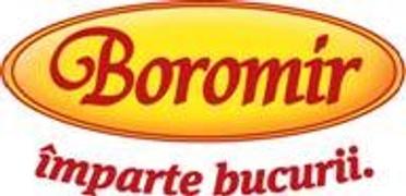 Locuri de munca la SC.BOROMIR.IND SRL
