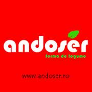 Stellenangebote, Stellen bei ANDOSER EUROPA SRL