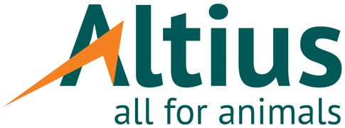 Job offers, jobs at ALTIUS SRL