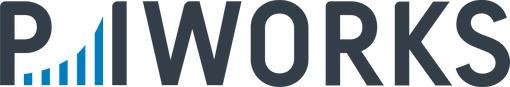 Locuri de munca la P.I.Works