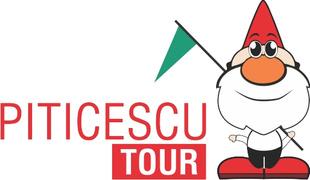Locuri de munca la PITICESCU TOUR
