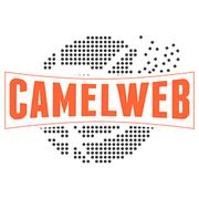 Locuri de munca la CamelWeb Creations SRL