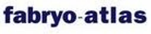 Job offers, jobs at Fabryo Corporation