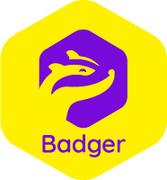 Job offers, jobs at BADGER.APP S.R.L