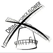 Locuri de munca la Drim Force Flower