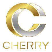 Locuri de munca la CHERRY-STUDIO