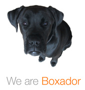 Job offers, jobs at Boxador Labs