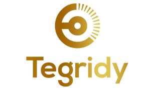 Locuri de munca la Tegridy HR Consulting