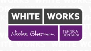 Locuri de munca la White Works Support
