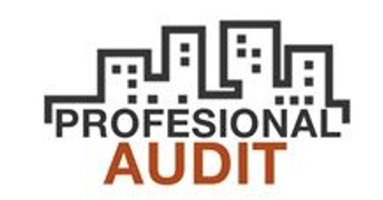 Job offers, jobs at PROFESIONAL AUDIT SRL