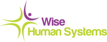 Locuri de munca la SC Wise Human Systems SRL