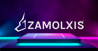 Locuri de munca la ZAMOLXIS ROMANIA