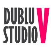 Locuri de munca la S.C Dublu V Studio S.R.L