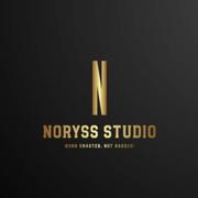 Locuri de munca la Noryss Studio