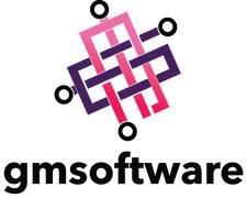 Locuri de munca la GM Software