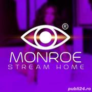 Locuri de munca la Monroe Stream Bucuresti