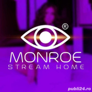Job offers, jobs at Monroe Stream Bucuresti