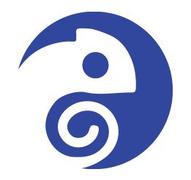 Job offers, jobs at BLUE CHAMELEON TECH S.R.L.