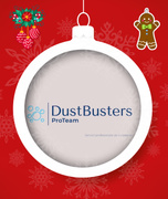 DUSTBUSTERS PROTEAM