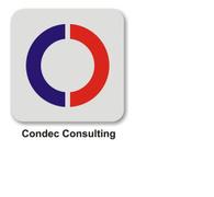 Locuri de munca la Condec Consulting SRL