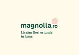 Job offers, jobs at MAGNOLIA