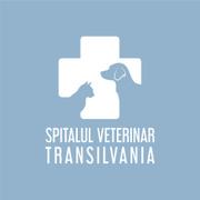 Job offers, jobs at Spitalul Veterinar Transilvania