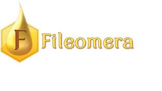 FILEOMERA