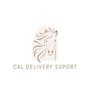 CAL DELIVERY SUPORT SRL