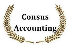 CONSUS ACCOUNTING SRL